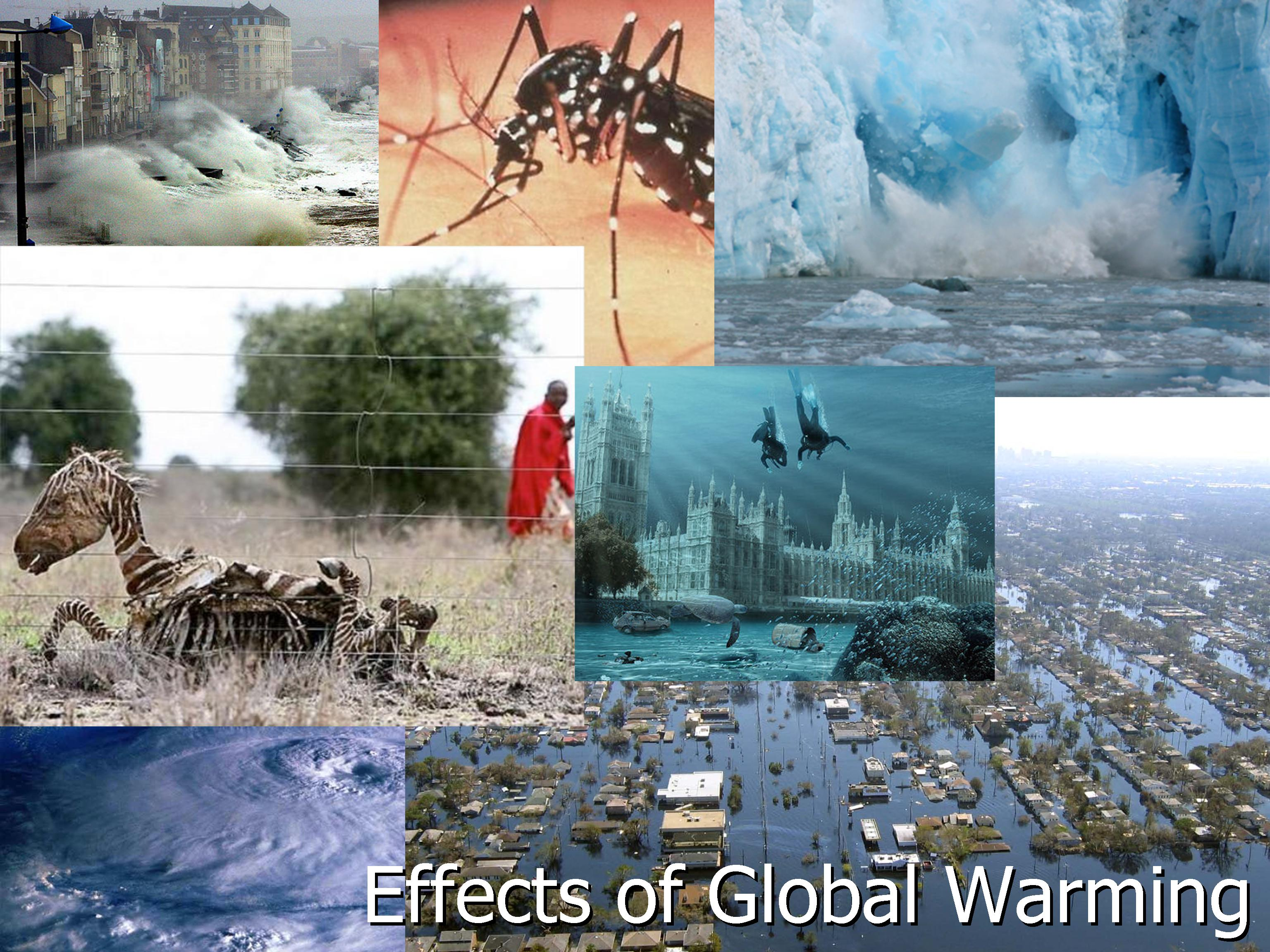 an introduction to the effects of global warming on the global environment Modern global warming is the result of an increase in magnitude of the so-called greenhouse effect, a warming of earth's surface and lower atmosphere caused by the presence of water vapour, carbon dioxide, methane, nitrous oxides, and other greenhouse gases.
